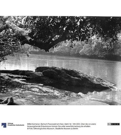 Mittel-Kamerun. Bamum Flusswald am Nun