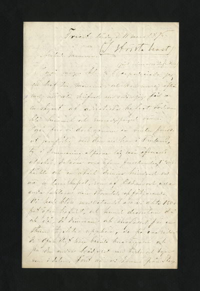 Triest, lördag d. 11 mars 1876