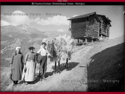 Transport des gerbes de seigle à Tsan-Plan, Saint-Luc Val d'Anniviers