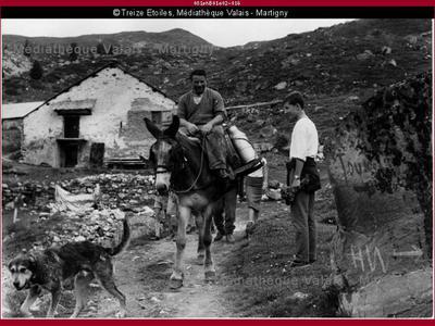 Transport à dos de mulet, Saint-Luc
