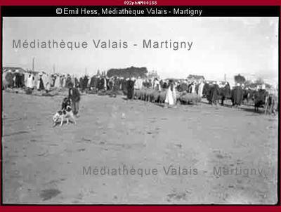 Sidi bel Abbes, Maroc