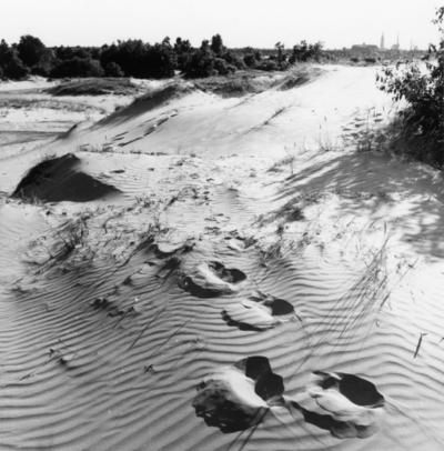 Recreatiegebied. Voetstappen in het zand