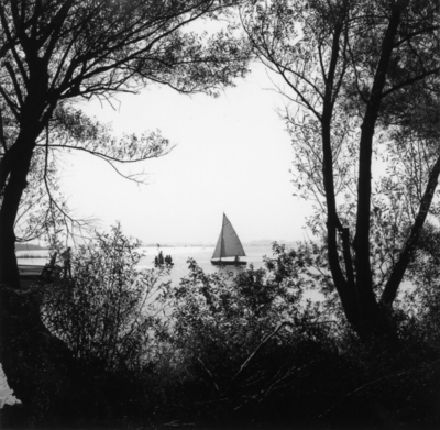 Recreatiegebied. Een zeilboot op het water