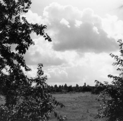 Westerheide. Recreatiegebied met op de achtergrond de watertoren van Laren