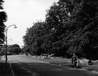 Schuttersweg. gezien vanaf de ´s-Gravelandseweg in de richting van de HBS. Situatie voor de aanleg van de autoweg
