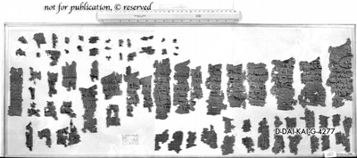 Fragmentiertes Papyrus