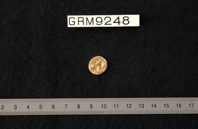 Volledige stater van de Veliocasses (munt) in goud