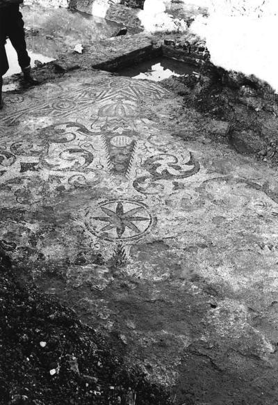 Classe (Ravenna), Ritrovamento del pavimento musivo nel secondo sacello presso la Basilica di San Severo (1965)