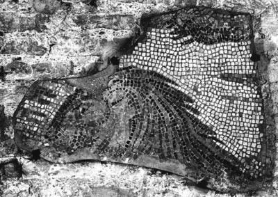 Ravenna, Cosiddetto Palazzo di Teodorico, Frammento di mosaico pavimentale