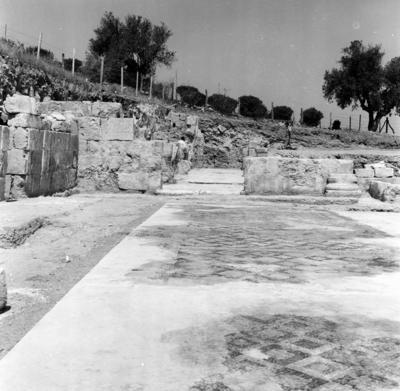 Department of Antiquities, Republic of Cyprus, Potamos tou Kampou, Basilica of Soloi, view of the Basilica (B37566)