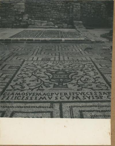Poreč (Jugoslavia). Basilica Eufrasiana. Mosaico pavimentale all'esterno