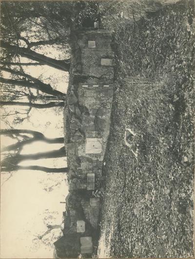 Roma, area sepolcrale di Villa Pamphilj. Il muro di recinzione del settore nord e le epigrafi ancora in situ. La seconda da destra è quella di C. Julius Proculus.