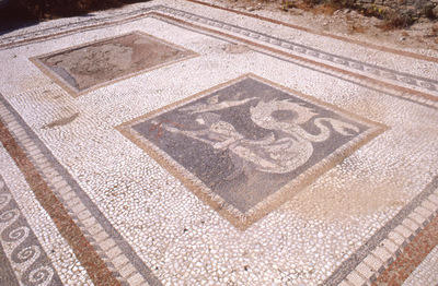 Mosaic floor of the north room of the so-called House of the Tritons/House of the Trident (theatre area), Delos, 1987