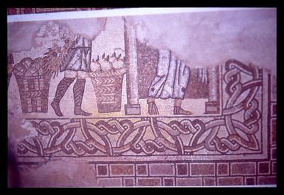 Rimini, Domus of Palazzo Gioia, fragment of mosaic floor