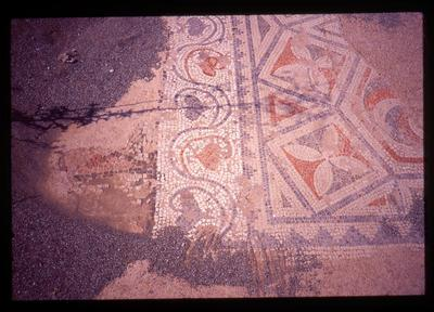 Crete, Gortys, Triconch of Mitropolis, mosaic floor, detail of frame with vegetable motif