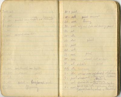 Denník Jána Mallého z roku 1916
