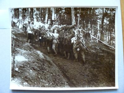 Tunurile artileriei grele de la Oituz (1917)
