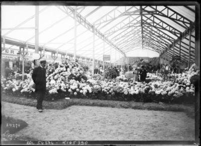 8-6-19, exposition d'horticulture [Paris, Cours-la-Reine] : [photographie de presse] / [Agence Rol]