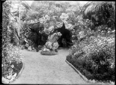 6-6-20, exposition d'horticulture [palmarium du jardin d'acclimatation] : [photographie de presse] / [Agence Rol]