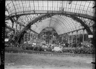 20/5/21, exposition d'horticulture [palmarium du jardin d'acclimatation] : [photographie de presse] / [Agence Rol]
