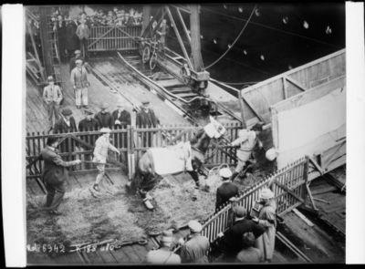Embarquement de Papyrus [cheval de course] pour l'Amérique à bord de l'Aquitania [paquebot britannique, le 21 septembre 1923] : [photographie de presse] / [Agence Rol]