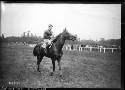 18/4/26, Longchamp, Astérus [cheval de course] monté par C. Elliott, à M. Marcel Boussac, vainqueur du prix Greffulhe : [photographie de presse] / [Agence Rol]
