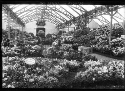 Exposition d'horticulture, 25/5/1910 [à Paris, Cours-la-Reine] : [photographie de presse] / [Agence Rol]