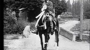 Il cavallo del reggimento