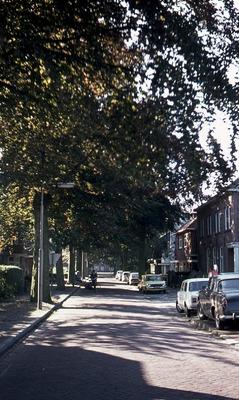 Straatbeeld met panden, bomen en geparkeerde auto's.