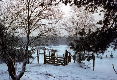Ingang natuurgebied bij de Lage Vuursche in de winter.