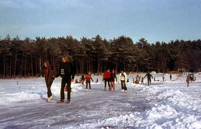 Een groep schaatsende mensen in de Lage Vuursche.