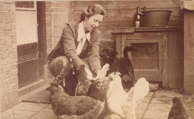 Cilia Loots voert haar kippen. Tijdens de Tweede Wereldoorlog liet zij meerdere joden in haar woningen aan de Kapelweg 108 en 110 onderduiken. Hiervoor kregen zij en haar           assistente Dina van der Geld in 1970 de Yad Vashempenning.