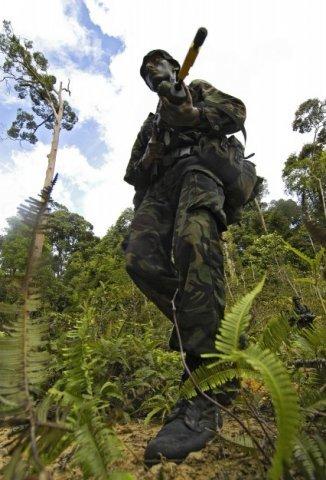 Enkele Nederlandse mariniers volgen in Brunei de Britse jungle training aan de Jungle Warfare Wing. Na het voltooien van deze zware traning kunnen zij als instructeur of als           adviseur optreden.