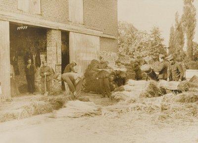 Duitse soldaten zijn bij een boerderij bezig met het bundelen van vlas. Het vlas wordt op kruiwagens geladen tewijl links een man op klompen toekijkt.