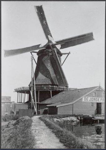 Zaandam Kalverringdijk De Jonge Prinses (pelmolen) Toevoeging: Windbrief aan Maarten Cornelisz. Kop, d.d. 1 februari 1686. Op 9 januari 1722 door Jan van der Leij verzekerd           tegen brandschade. Verbrand op 28 october 1868. Op zijn plaats werd de afgebroken pelmolen De Fenix opgericht. Zie nummer 19 van deze serie. Deze molen is tot 1906 gerst blijven pellen en           werd daarna voor andere doeleinden gebezigd. In 1934 werd hij onttakeld en in 1937 werd de overgebleven romp verwijderd. Onderbouw en schuur bleven bestaan. Stond aan de Kalverringdijk           binnendijks niet ver van de grens der gemeente Zaandam.