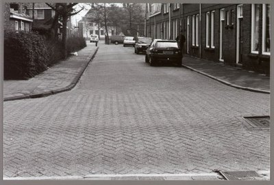Krommenie. Groen van Prinstererstraat. Gezicht op het Vlusch.