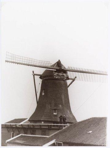 Zaandijk. Guisweg. De binnenroed werd op zijn plaats gezet tijdens de restauratie van papiermolen De Schoolmeester. Anno 1692.