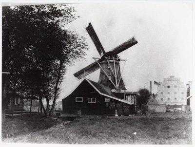 Wormer Veerdijk Verfmolen 'De Witte Duif' gesloopt in 1903