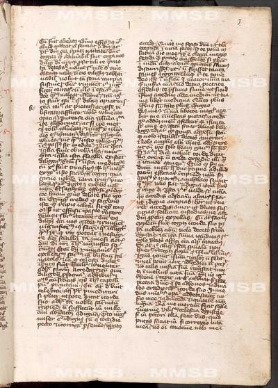 Varii textus theologici, sermones