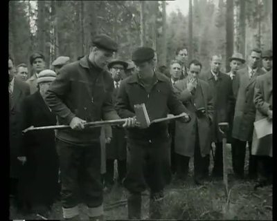 Finlandia-katsaus 601