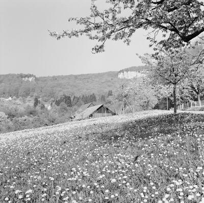 Fotografie   Frenkendorf, Schauenburgerfluh