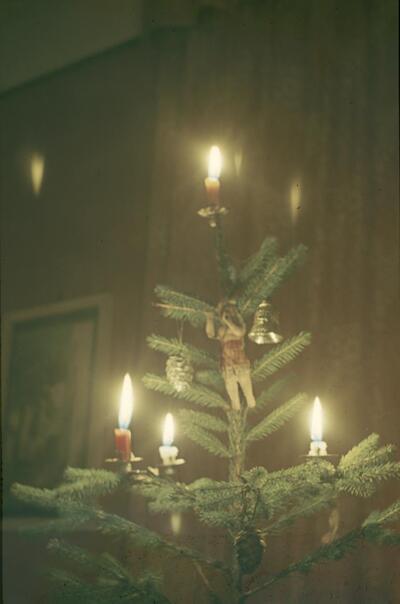 Liestal, Oristalstrasse 19, Weihnachtsbaum bei Strübins