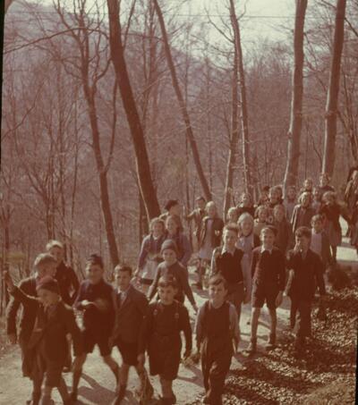 Liestal, Freiheitsbaum, Vorbereitungen
