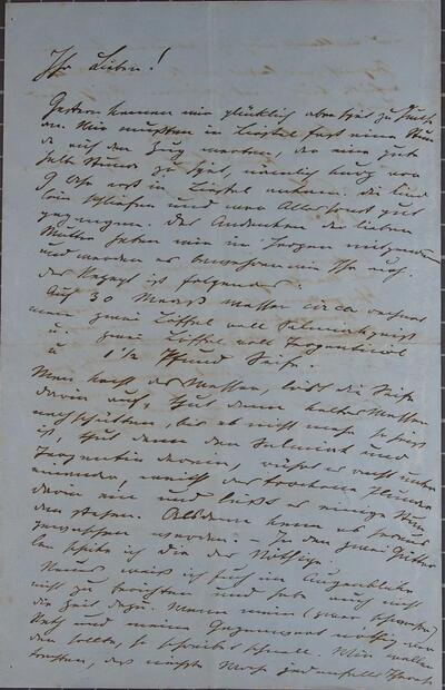 Brief 06.09.1860 - an Eltern