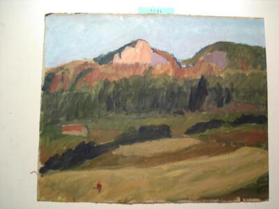Landschaft CH - Sissacherfluh