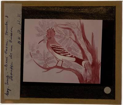 Vogel in een struik, geschilderd op papyrus
