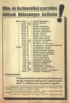 Bika- és üszőnevelési szerződés kötések Békés megye területén