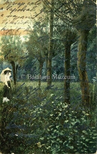Erdőrészlet napernyős nővel
