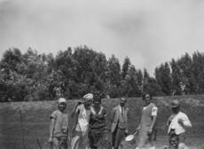 Látogatók Tisza-töltés melletti cserkésztáborban