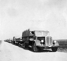 Katonai teherautókból álló menetoszlop